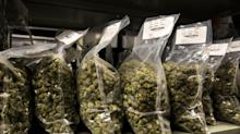 Green Growth Launches $1.8 Billion Hostile Offer for Aphria