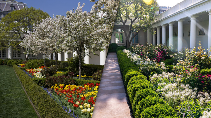 Melania Trump, Jill Biden and the Rose Garden battle