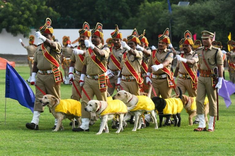The Indian Railway Protection Force's dog squad march during a ceremony to celebrate country's 73rd Independence Day (AFP Photo/Noah SEELAM)