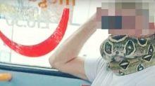 VIDÉO - Angleterre : dans un bus, un homme utilise un serpent comme masque de protection