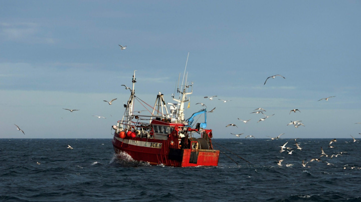 Brussels likens upcoming Brexit negotiations to 'shadowboxing', as both sides unlikely to make any gains on fisheries