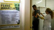 Especialista alerta para risco real de febre amarela urbana nas Américas