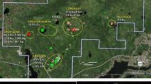 Northern Shield Options New Low Sulphidation Epithermal Gold Project in Newfoundland