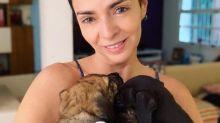 """Claudia Ohana reflete sobre polêmica com cachorros: """"Não tenho outra solução"""""""