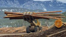 Oaktree Wins Glass Lewis Nod in Push to Block Tembec Deal