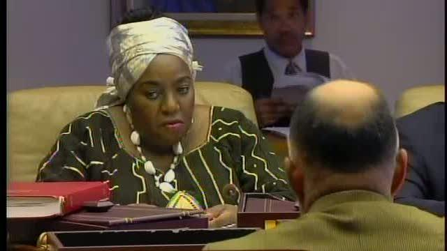Detroit City Council budget discussions