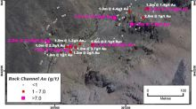 Palamina Channel Sampling Results Underpin Extensive Surface Gold Mineralization at the Coasa Gold Project