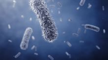 Chronic Fatigue Syndrome Linked with Differences in Gut Bacteria