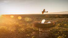 肯亞五星級樹屋 讓你近距離接觸野生動物