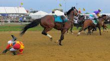 Jockey verloren, Rennen gelaufen: Pferd wird zum Star
