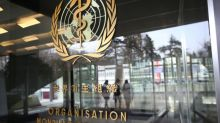 WHO sees 'intense transmission' of virus in relatively few countries