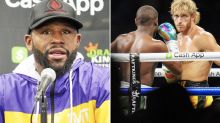 Floyd Mayweather's massive confession after Logan Paul 'disgrace'