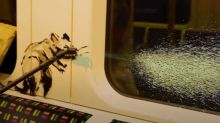 Banksy défend le port du masque avec une nouvelle oeuvre dans le métro de Londres