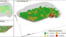 IAMGOLD publie une première estimation des ressources de 3,2 millions d'onces présumées pour le projet aurifère Nelligan, au Québec