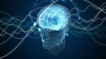 Las raíces biológicas de la moral y la conciencia: tus neuronas podrían condicionar hasta tu decisión electoral