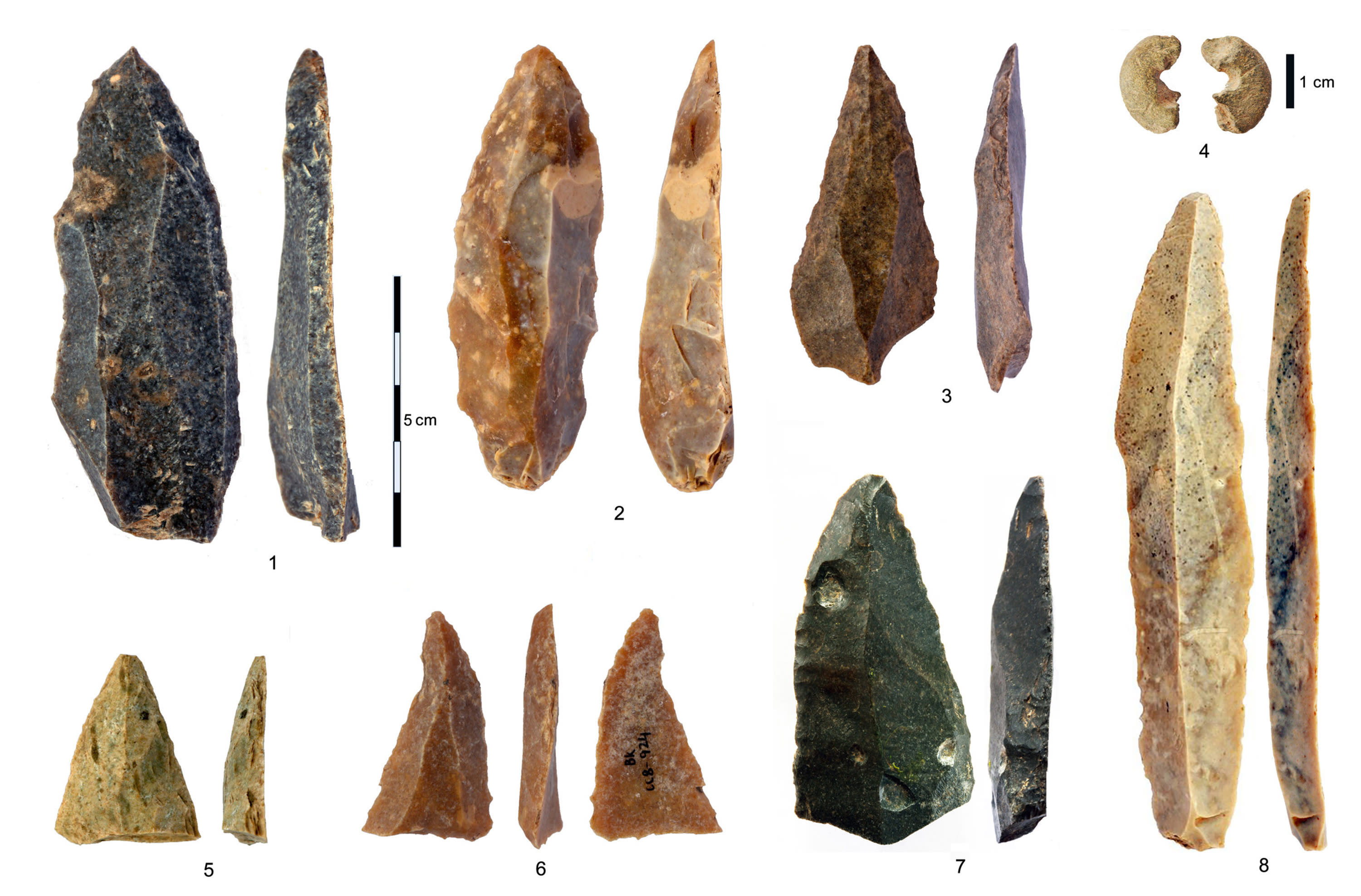 This image provided by Tsenka Tsanova in May 2020 shows stone artifacts from the Initial Upper Paleolithic discovered in the Bacho Kiro Cave in Bulgaria. Two new studies Monday, May 11, 2020, show that Homo sapiens bones found in the Bulgarian cave date back to as far as 46,000 years ago, which is thousands of years earlier than previous human fossils in Europe.(Tsenka Tsanova via AP)