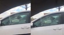 Cachorro fica preso em carro e buzina para chamar atenção da dona
