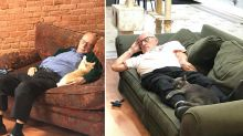 Man volunteers his time to nap with cats for hours every day