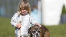 Mia Tindall brings pet dog to support her mother Zara at horse trials