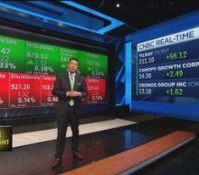 Cannabis stocks riding high