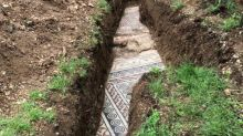 Ancient Roman mosaic floor discovered under vines in Italy