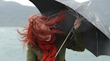 The top-rated windproof umbrellas as Storm Brendan batters the UK