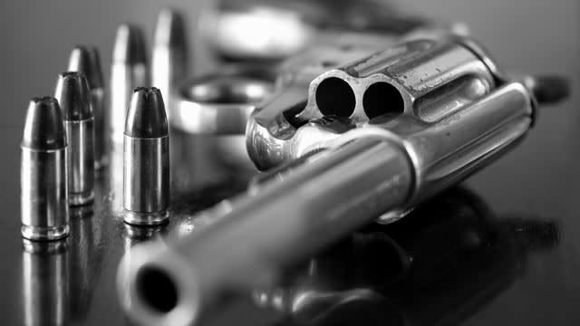 Gun Expose Paper Hires Armed Guards