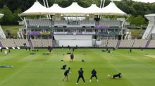 Cricket's new landscape could mean less is more for Test matches