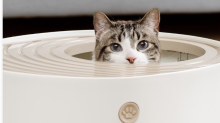 This litter box changed my life — see how it looks in your home in augmented reality