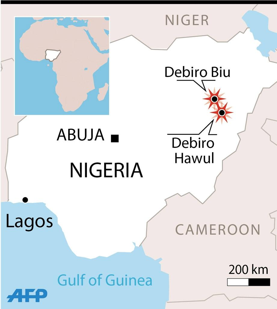 Boko Haram has been fighting to establish a hardline Islamic state in northeast Nigeria since 2009 (AFP Photo/)