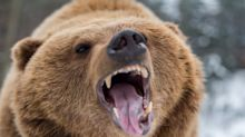 The 9 Best Stocks of America's Last Bear Market