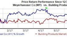 Weyerhaeuser's (WY) Growth Strategies Solid: Time to Buy?