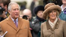 Why there's such a big debate about Camilla's title