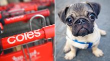 Coles offers innovative new way for dog owners to treat their pets