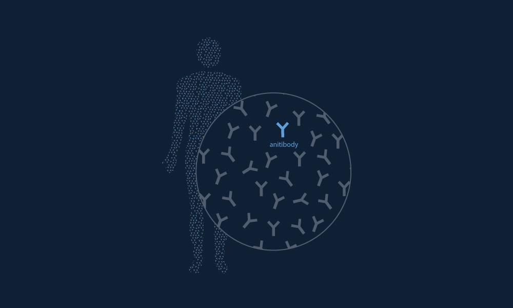 Serimmune launches new immune response mapping service for COVID-19