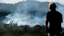 Indonesian pulp mill causing huge environmental damage: activists