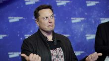 'Crushed like a souffle': Elon Musk issues Tesla share warning