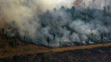 Brasil combate incendios en Amazonía tras aparición de focos nuevos