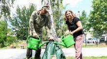 Projekt : Anwohner können mit Bewässerungssäcken Bäume wässern