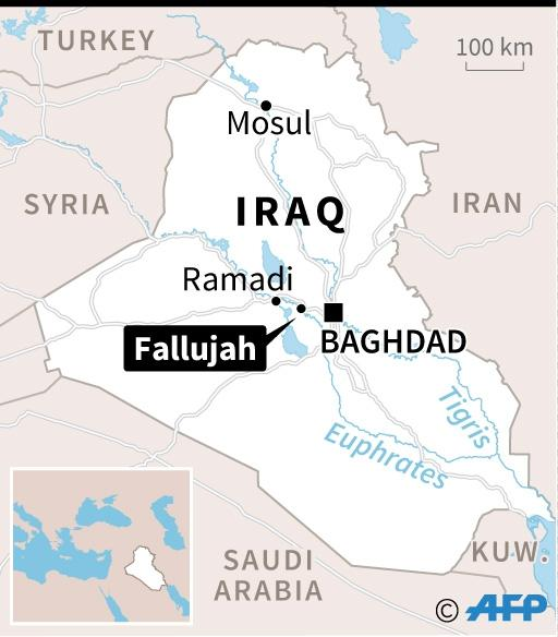 Iraqi forces have recaptured Fallujah from IS after more than two years under the group's control (AFP Photo/)