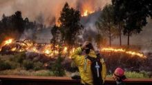 California wildfire was triggered by explosives at gender reveal party, claims fire department