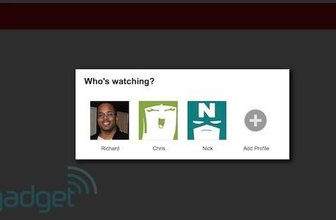 Netflix profiles won't work via Windows Media Center plugin