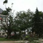 Survivor of Iowa Tornadoes Talks About Her Ordeal