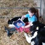 Coronavirus: Girl, six, reads storybooks to family's calves during lockdown