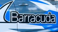 Bears Pounce On Barracuda, Stock Falls On Guidance, Investments
