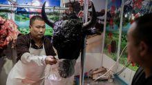 Virus, epidemias y el peligroso encanto de los mercados exóticos