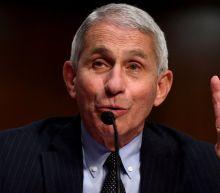 Coronavirus: US disease chief Dr Anthony Fauci calls White House attacks 'bizarre'