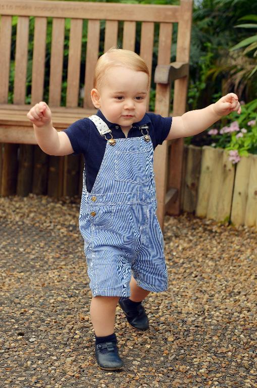 Prince George at London's Natural History Museum on July 2, 2014 ahead his first birthday on July 22 (AFP Photo/John Stillwell)