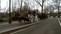 De Blasio vows to ban horse-drawn carriages in NYC