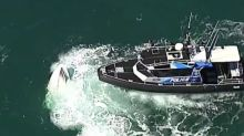 Two dead after boat capsizes off Brisbane